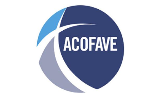 Acofave apoya mejoras de Aduanas en valoracion vehículos importados